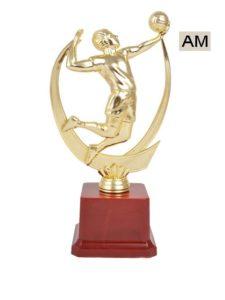 Basketball Championship Trophy