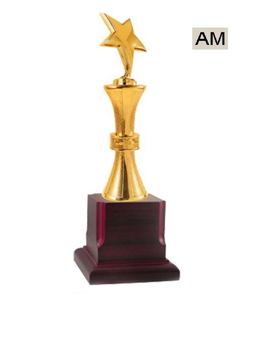big metal star award
