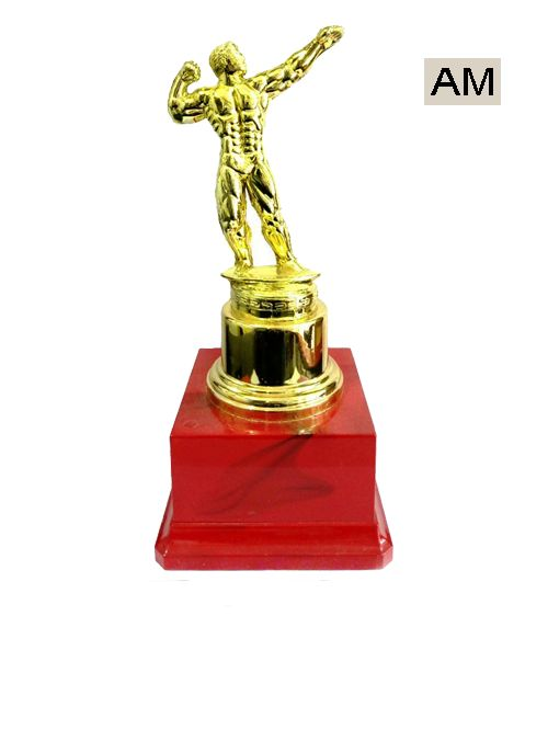 bodybuilding plastic trophies