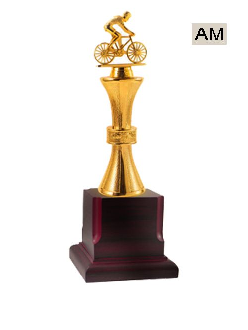 cycle metal theme trophy
