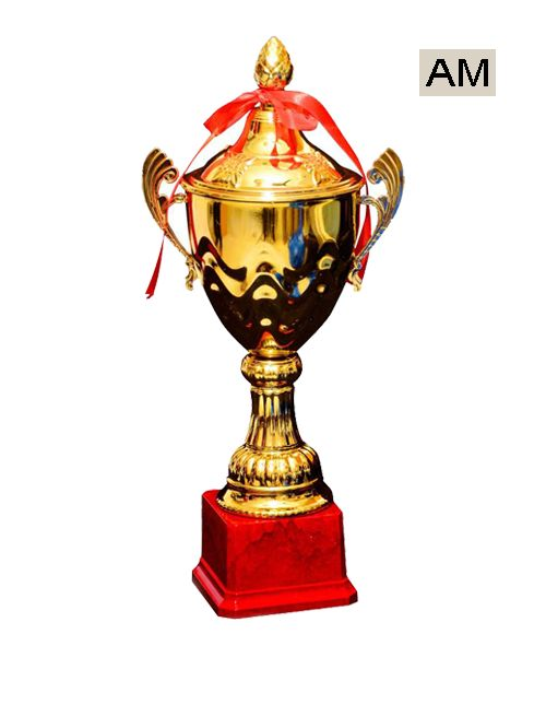 metal plastic sports cup