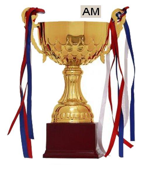 plastic big sports cup