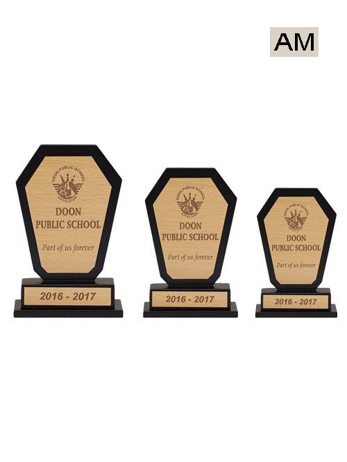 academic school award