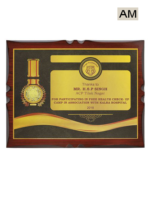 chief guest memento for ngo