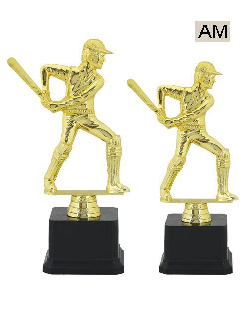 cricket type trophy