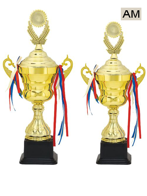 cup type trophy