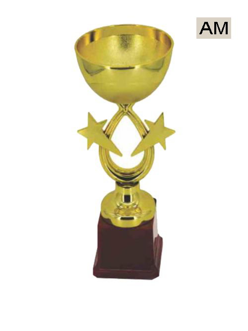 cup with star gold trophy