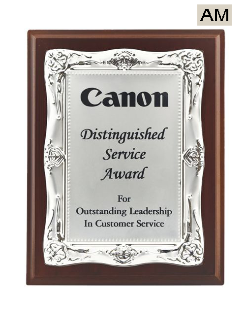 distinguished silver service award