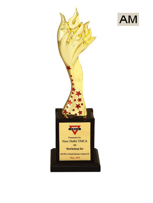 fancy corporate award