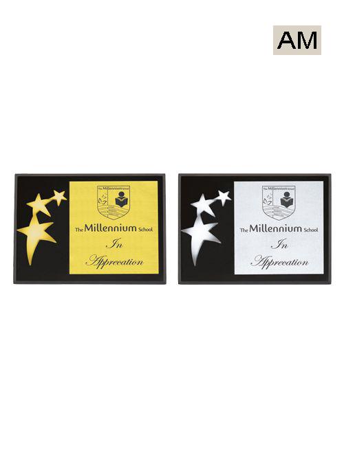 gold silver star award