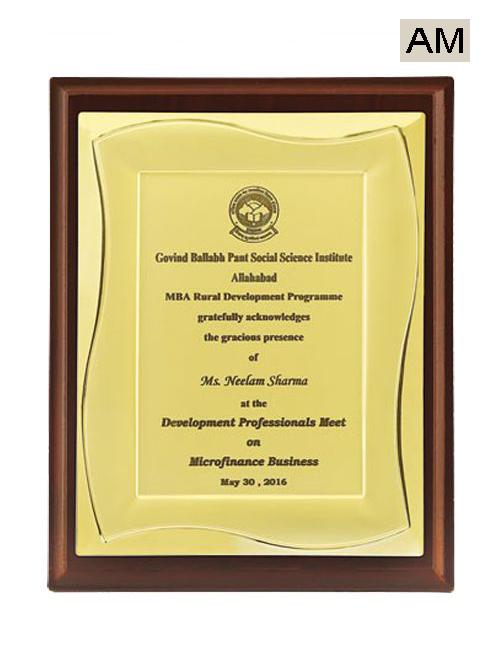 institute meet award