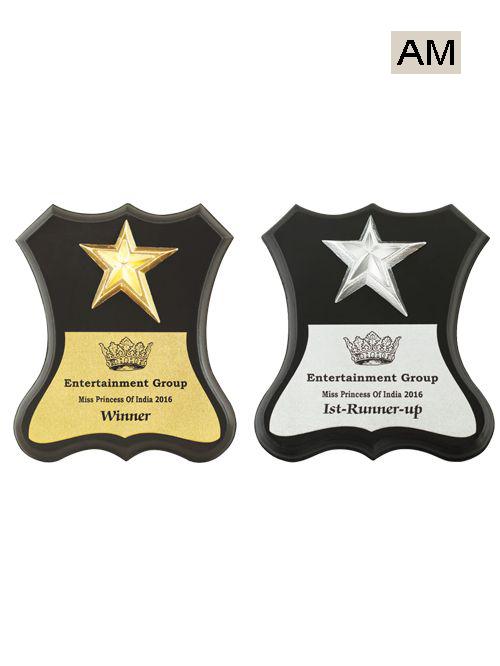 miss princess award