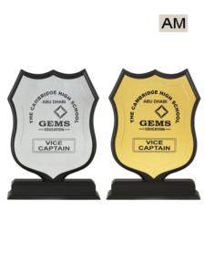 School Awards
