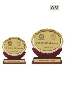 School Chief Guest Award