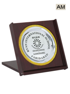 School Student Award