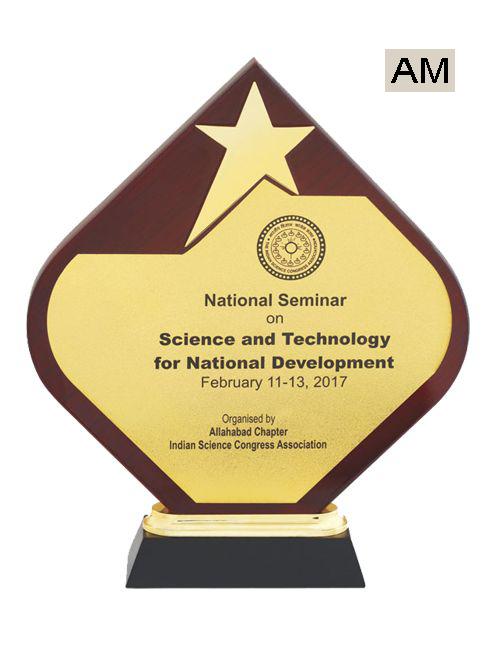 star achiever award