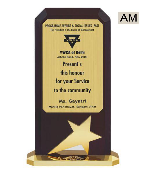 star chief guest award