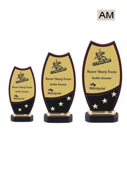 star golden award