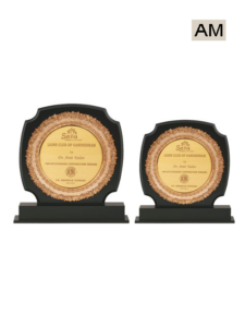 Wooden Stand Award